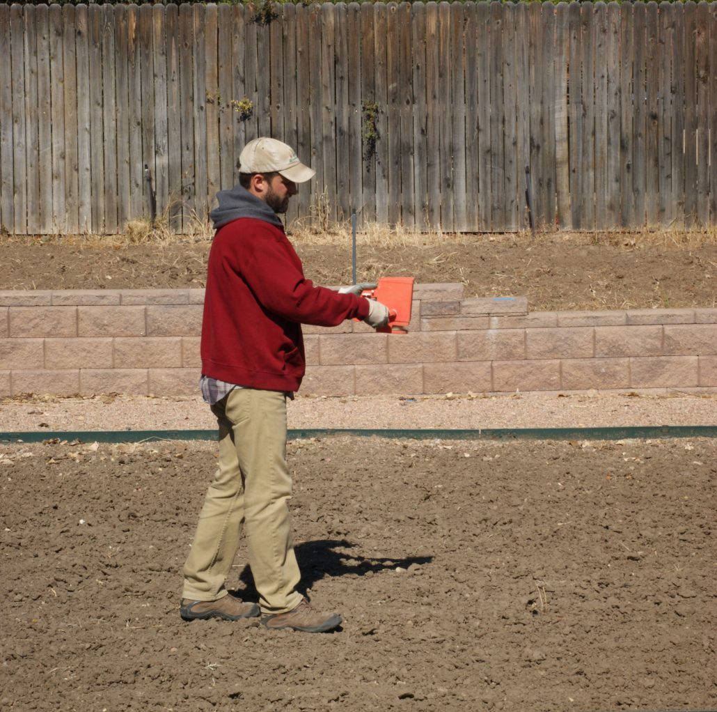 Dormant hand seeding