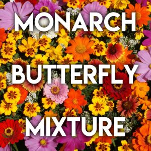 Monarch Butterfly Mix