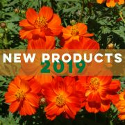New Seed Products for 2019   Applewood Seed Company